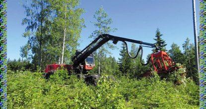 Условия труда на лесохозяйственных работах